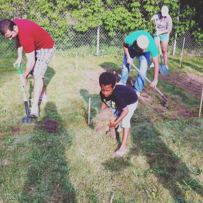 Group working at the community garden